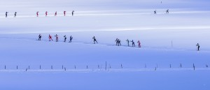 Bad Mitterndorf, Steiermark, Oesterreich (Austria), 31.01.2015: Skilanglauf, 36. Internationaler Steiralauf, Bild zeigt Teilnehmer auf Feldern nahe Krungl.