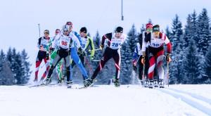 Bad Mitterndorf, Steiermark, Oesterreich (Austria), 31.01.2015: Skilanglauf, 36. Internationaler Steiralauf, Bild zeigt die Spitzengruppe auf den Distanzen 25 und 50 km Freie Technik.