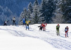 Bad Mitterndorf, Steiermark, Oesterreich (Austria), 31.01.2015: Skilanglauf, 36. Internationaler Steiralauf, Bild zeigt Teilnehmer auf den Distanzen 25 und 50 km Freie Technik.