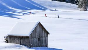 Bad Mitterndorf, Steiermark, Oesterreich (Austria), 31.01.2015: Skilanglauf, 36. Internationaler Steiralauf, Bild zeigt Teilnehmer auf der Distanz 30 km Klassisch.