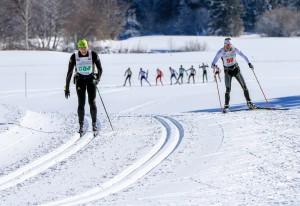 Bad Mitterndorf, Steiermark, Oesterreich (Austria), 31.01.2015: Skilanglauf, 36. Internationaler Steiralauf, Bild zeigt einen Teilnehmer in Freier Technik und einen Teilnehmer in Klassischer Technik.
